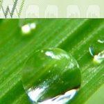 Websites voor de agrarische sector